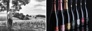 Thienot Champagne Header Image
